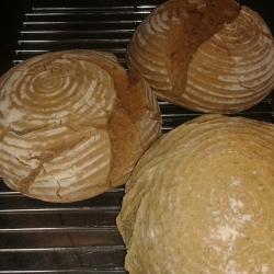 Brot aus dem Holzbackofen